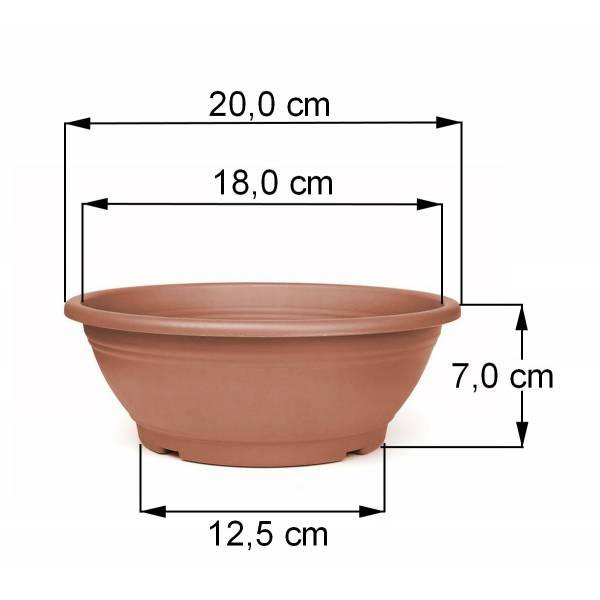 Pflanzschale terracotta 20 cm